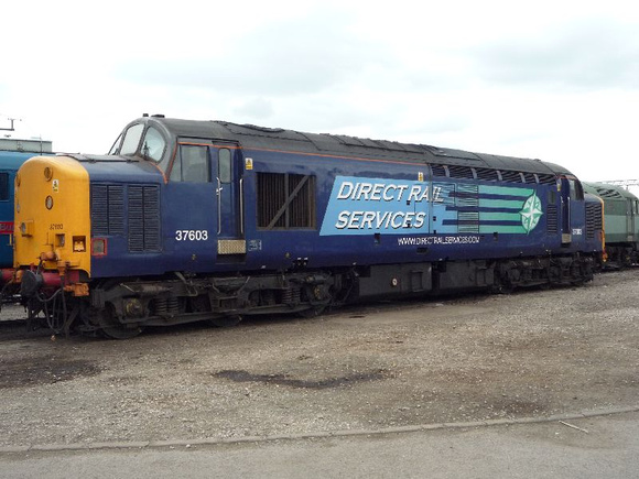 37603 at Crewe Heritage Centre